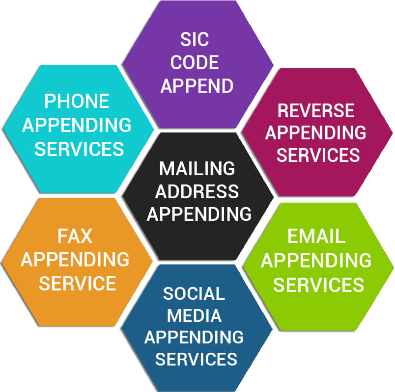 Data Management Services Offered By InfoCleanse V1