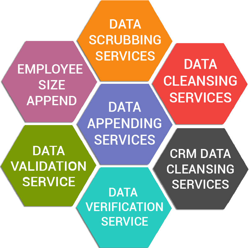 Data Management Services Offered By InfoCleanse V2